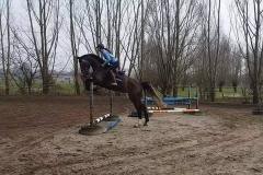 El_Tarra_springen
