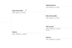 Vandaal vd Katten Eeck: Vigo d' Arsouilles x VDL Oramé